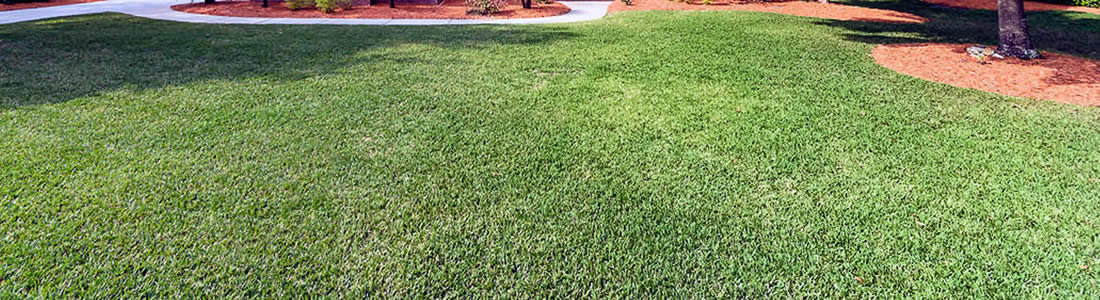 Hibernia Florida's Lawn Mowing Services near me